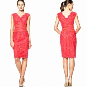 Tadashi Shoji red lace dress with ribbon detail
